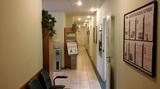 Клиника Иммунобиосервис, фото №1